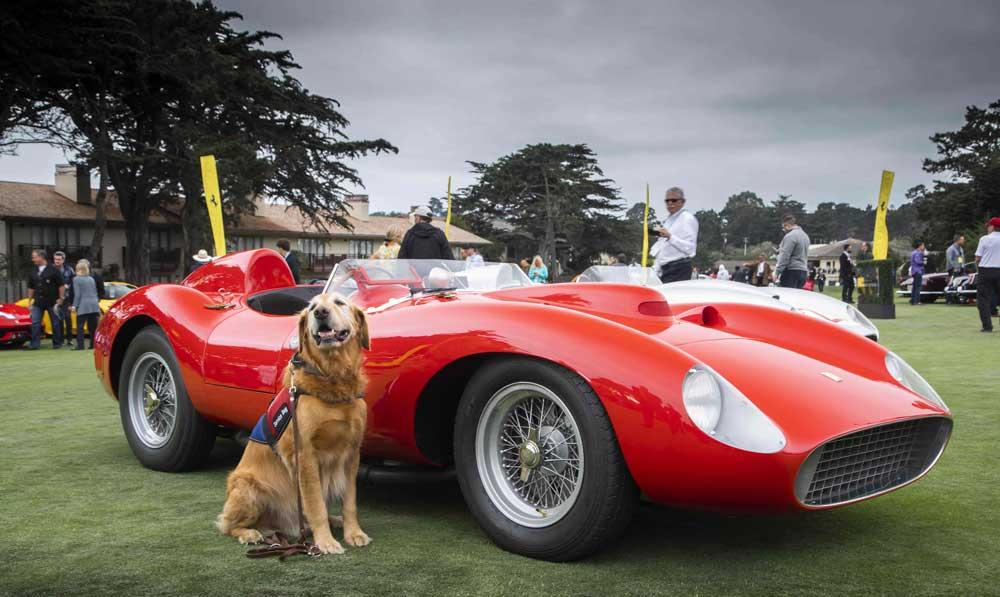 Ferrari-112