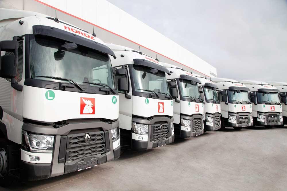 Renault-Trucks_Horoz-Lojistik_Teslimat_Gorsel-4