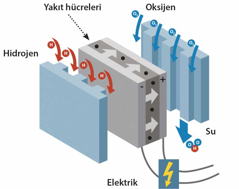 hydrogen-fuelcell