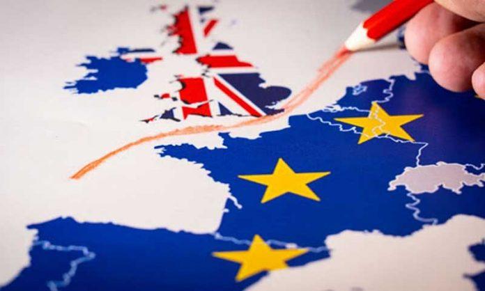 und-dikkat-fransiz-hukumeti-tarafindan-yayimlanan-brexit-gecis-sureci-bitiminde-uygulanacak-kurallar-ve-elektronik-gumruk-sistemleri-kesintisi