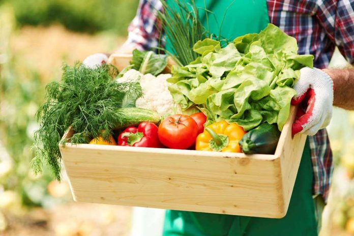 close_up_box_with_vegetables_hands_mature_man