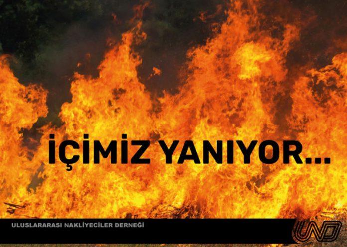 yanan-ormanlarimiz-icin-agaclandirma-kampanyasi-baslattik--3